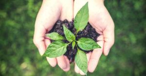 Помощ за инвестиции в земеделски стопанства чрез преотстъпване на корпоративен данък